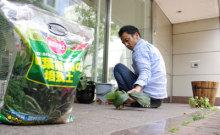 港区赤坂にあるビデオ制作会社のブログ-植物の手入れをする専務